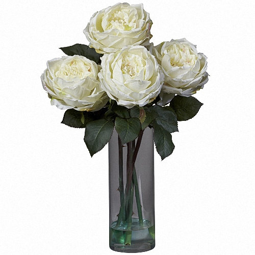 White Patience Garden Rose buy flower gifts and small packs